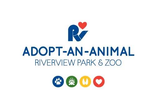 riverview park and zoo adopt an animal